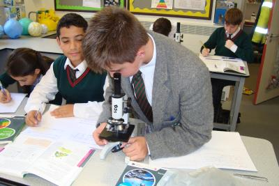 Practical Science in Year 7 & Year 8